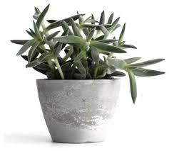 pompidou concrete planter contemporary indoor pots and