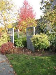 Backyard Bird Sanctuary by Container Planting For Side Of Deck To Provide Privacy Screen And