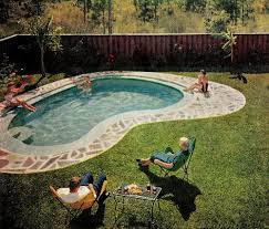 Backyard Pool Images best 25 kidney shaped pool ideas on pinterest swimming pools
