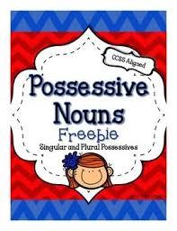 best 25 possessive nouns ideas on pinterest noun anchor charts
