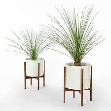 one of my favorite accessories for any space are beautiful plants