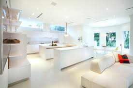 Italian Kitchen Cabinets Miami Modern Kitchen Cabinet Doors Pictures U0026 Ideas From Hgtv Hgtv