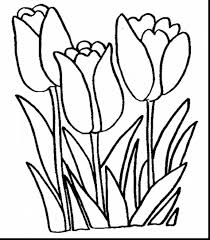 marvelous spring flower coloring pages printable with printable