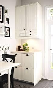 Free Standing Cabinets Kitchen Kitchen Self Standing Pantry With Free Kitchen Cabinets Throughout
