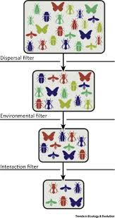 should environmental filtering be abandoned trends in ecology