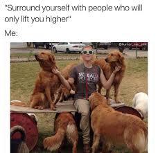 Dog Lover Meme - compilation of dog memes pt 1 album on imgur