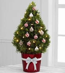 christmas tree delivery best 25 christmas tree delivery ideas on vintage