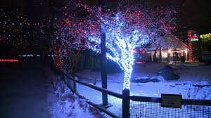Zoo Lights Schedule by Colorado Holiday Lights 2016 Map And Photos Fox31 Denver