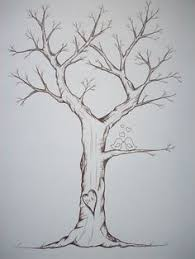 trees drawings sketch of a winter tree by judith m feingold