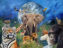 wildlife art wildlife artist original paintings of animals and