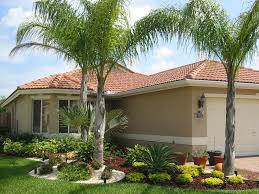 Landscape Design For Front Yard - best 25 landscaping with palm trees ideas on pinterest palm