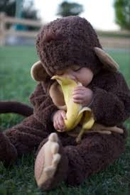 Baby Halloween Costumes Monkey 25 Babies Costumes Ideas Cute Baby