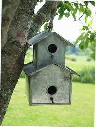 cool bird house u2013 myarticlesource info