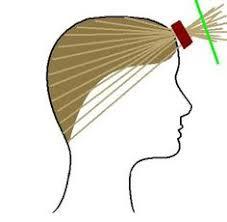 ponytail haircut technique layering long hair instructios hair pinterest layered long