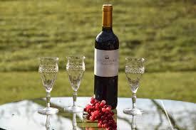 unique shaped wine glasses vintage etched wine glasses set of 3 unique shaped vintage