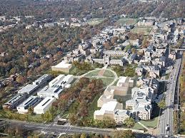 Wash U Colors - washington university set for major transformation of danforth