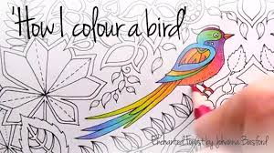 how i colour a bird blending colours enchanted forest johanna