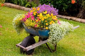 Flower Planter Ideas by 25 Wheelbarrow Planter Ideas For Your Garden Garden Lovers Club
