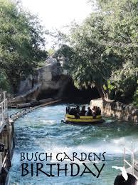 busch gardens birthday theme park visit merevin merevin