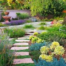 Drought Tolerant Backyard Ideas Water Wise Garden Design Guide Bottlebrush Drought Tolerant And