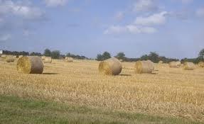 chambre d agriculture de l orne canicule bio et crise de l élevage à la chambre d agriculture de l orne