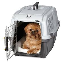 Dog Crate Covers Ruff Maxx Plastic Dog Crate Kennel Hayneedle