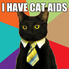 Aids Meme - i have cat aids cat meme cat planet cat planet