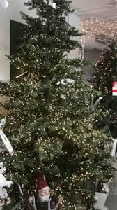 make your tree pop with these brilliant unbreakable