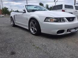 2004 white mustang convertible 2004 ford mustang svt cobra for sale 90 used cars from 14 000