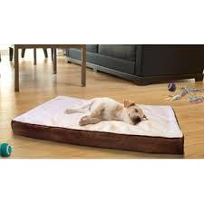 beds you ll wayfair