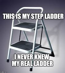 Ladder Meme - this is my step ladder i never knew my real ladder meme