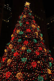 best christmas lights in chicago 87 best christmas lights images on pinterest christmas lights