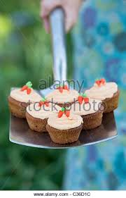 cup cake patterns stock photos u0026 cup cake patterns stock images