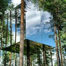 cool tree house 15 ridiculously cool tree houses