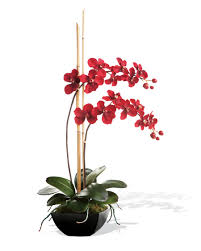 orchid plant shop silk vanda orchid plant at officescapesdirect
