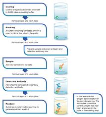 types of elisa bio rad