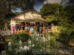 Texas travel bug images Wild west store wimberley texas this is my favourite lit flickr jpg