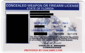florida concealed carry permit information
