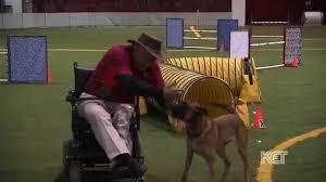 belgian shepherd kentucky dog agility trainer gene glastetter kentucky life ket youtube
