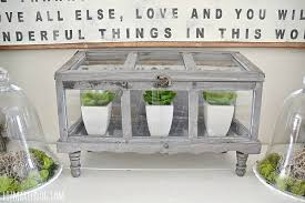 diy terrarium the best gray stain u0026 faux greenery liz marie blog