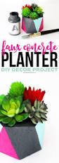 faux concrete planter diy decor project printable crush