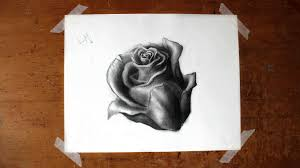 how to draw a realistic rose a basic flower tutorial for