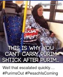 Purim Meme - this is why you cant carry purim shtick after purim well that