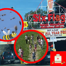 Texas Six Flags Bumblebees On Adderall Up A Six Flags Texas Travesty