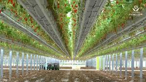 chambre d agriculture 47 l agriculture recrute en lot et garonne fraisiculture