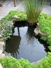 Backyard Fish Pond Ideas Small Fish Pond Idea For Home Garden 4 Home Ideas