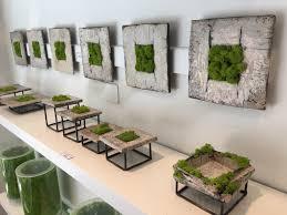 green your walls with schiavello vertical gardens schiavello