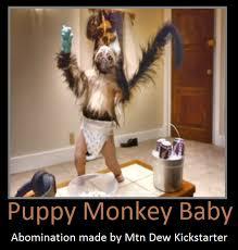 Baby Monkey Meme - puppy monkey baby by keyblademagicdan on deviantart