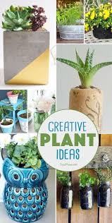 216 best gardening images on pinterest garden ideas gardening