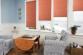 double cell shades light filtering peak window coverings